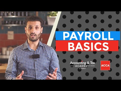 The Basics of Payroll   Small Business, Freelancers and Entrepreneurs