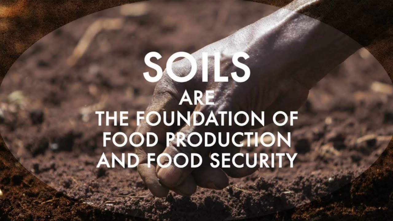 The status of the world s soil resources youtube for Soil resources definition