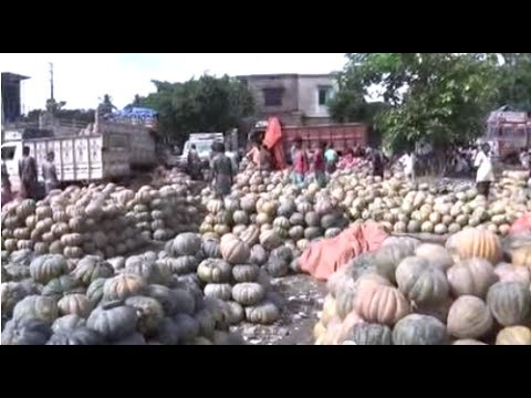 Amazing Wholesale Vegetable Market In A Village In West Bengal, India | Huge Village Market