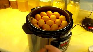 What to do with all those egg's / Long term storage of eggs