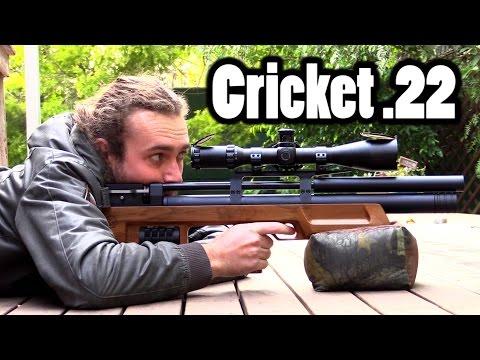 Kalibrgun Cricket  .22 Review