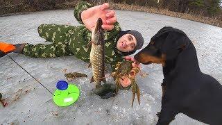 Зимняя рыбалка на жерлицы Готовлю Мяки ТакоЛовля раков в камышах на палку