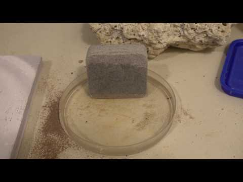 Super Absorbent Stone