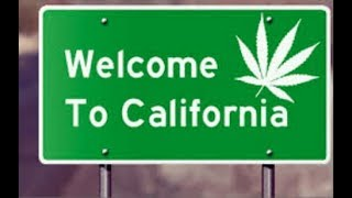 420-DAYS LATER | From California's November 8, 2016 vote to legalize, to the January 1, 2018 sale