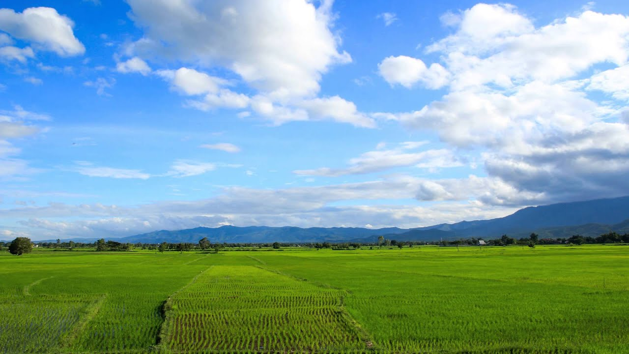 time lapse rice field with mountains and moving clouds in