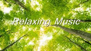 睡眠導入音楽・リラックスBGM。自然音(川のせせらぎ・小鳥のさえずり)...