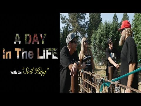 A Day In The Life - with Mendo Dope