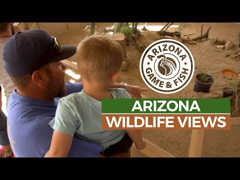 Episode 7 - 2018/2019 Arizona Wildlife Views Television