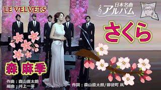 河津桜が咲いているニュースを見ました、いよいよ桜の季節がやって来ま...