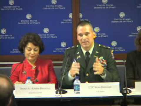 USAID's Community Stabilization Program and Counterinsurgency in Iraq