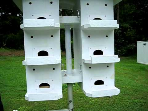 purple martin house - youtube
