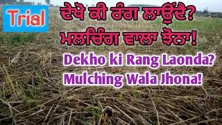 ਦੇਖੋ ਕੀ ਰੰਗ ਲਾਉਂਦੈ? ਮਲਚਿੰਗ ਵਾਲਾ ਝੋਨਾ! Dekho ki Rang Laonda Mulching Wala Jhona