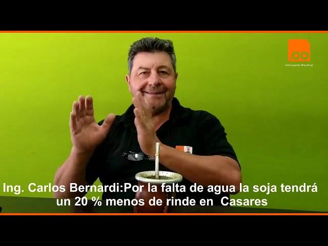 Carlos Bernardi, soja 0