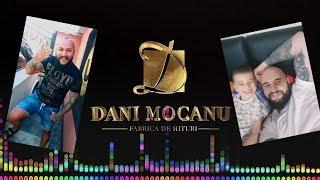 Dani Mocanu - Am un pui de campion ( Audio ) HiT 2018