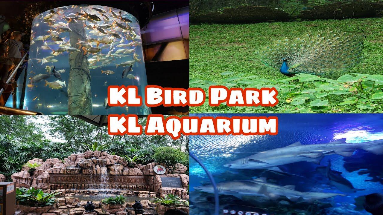BEAUTIFUL KUALA LUMPUR | MALAYSIA | KL AQUARIUM  | KL BIRD PARK