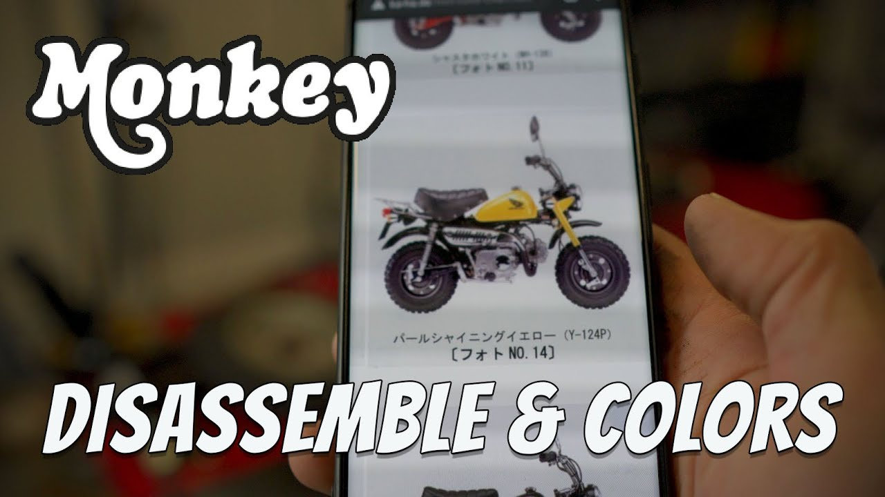 Download Honda Monkey z50j Build - Disassembly and Problems (Ep #2)