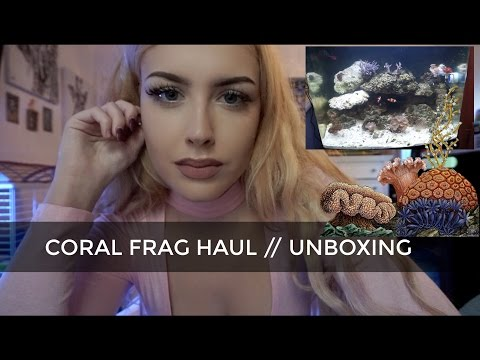 CORAL FRAG HAUL (Live Corals Shipped to My House)