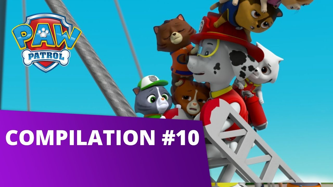 Paw Patrol Pup Tales Toy Episodes And More Compilation 10 Paw Patrol Official Friends Youtube