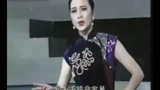 越剧祥林嫂·听他一番心酸话 方亚芬 便装 1994 Chinese Yue Opera