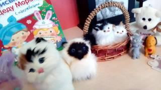 Мои игрушки и брелки в виде животных