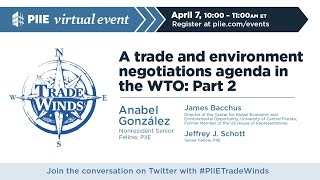 A trade and environment negotiations agenda in the WTO: Part 2