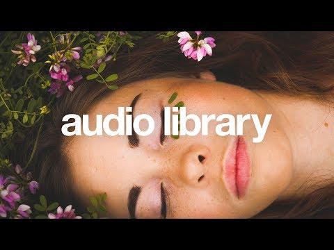 [No Copyright Music] Dream to live - ZAYFALL