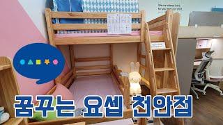 어린이가구, 원목이층침대, 크로스 이층침대, 꿈꾸는 요…
