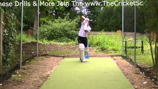 LeftHand HD Cricket Coaching Batting Drills Training Visual Lessons on How to Play On Drives