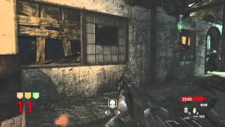 Call Of Duty: World At War. Zombies: Der Riese. Gameplay Rounds 1-21