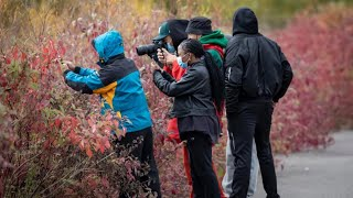 Birding group brings people of colour together outdoors