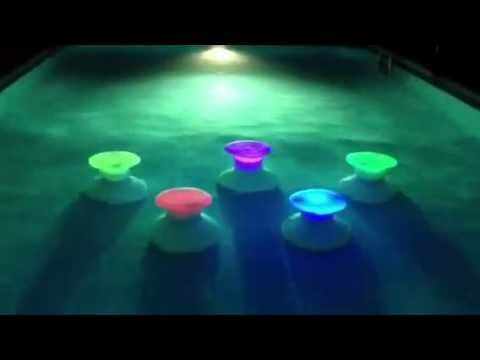 The Pool Stool VIDEO