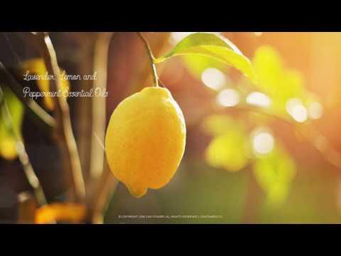 lavender,-lemon-&-peppermint-essential-oil-uses-&-benefits