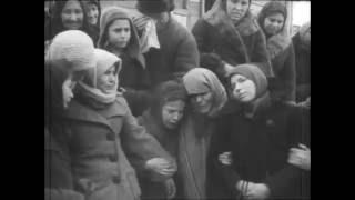 хроника великой отечественной войны (+18)