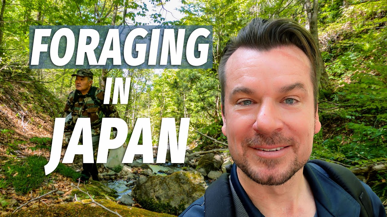 4 Wild Plants in Japan that are Safe to Eat!