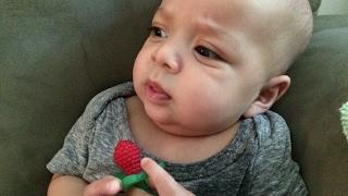 RaZbaby RaZ-Berry Teether : Baby Review
