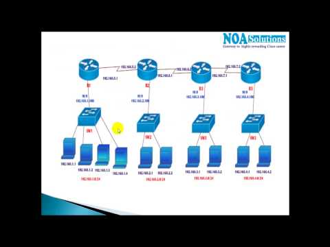 CCNA Routing & Switching: Rules To Assign Ip Address For Router