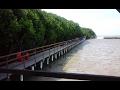 Hutan Mangrove Brebes Jawa Tengah