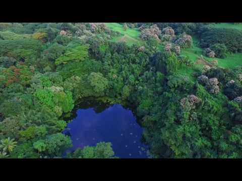 10 acres Hawaiian Big Island Property FOR SALE BY OWNER $599,000 USD