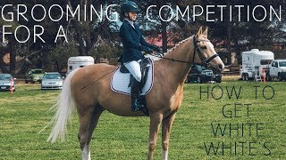 HOW I PREPARE MY HORSE FOR COMPETITION | WASHING, GROOMING AND PLAITING