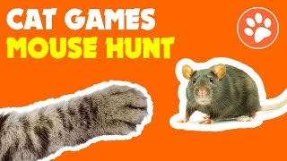 CAT GAMES MOUSE HUNT GAME for cats