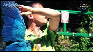 Парк развлечений Port Aventura (Салоу, Испания)(Небольшое видео, которое познакомит Вас с замечательным парком развлечений в Испании (Салоу) - Порт Авентур..., 2014-02-16T17:57:58.000Z)