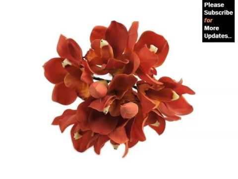 red-orchid-bouquet-|-collection-of-nice-and-rare-flower-images