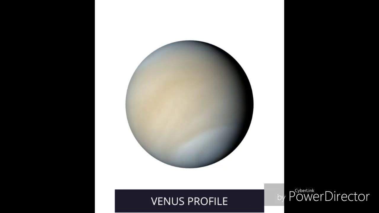 Venus Facts™