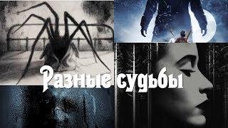 Обзоры фильмов: Что тебе нужно для жизни, Наклболл, Опоссум, Проклятый дом / Ведьма в окне.