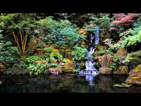 3 HOURS of The Best Relaxing music  | Bamboo Flute | For Med