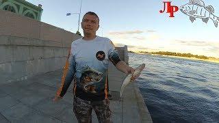 Ловля окуня на микроджиг в Санкт Петербурге