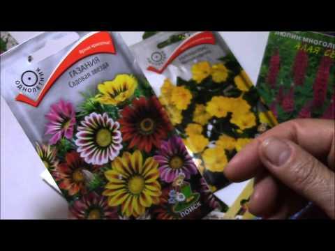 Семена цветов.  Подборка для начинающих цветоводов.