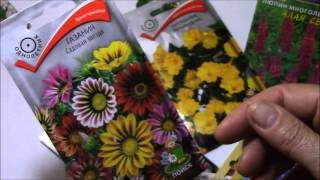 Семена цветов.  Подборка для начинающих цветоводов.(Семена цветов в магизе можно подобрать , но как знать подходят ли они для вашего участка. Какова высота раст..., 2016-02-28T13:15:31.000Z)