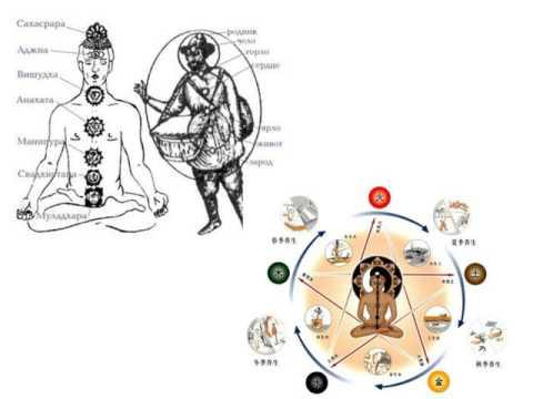 Энергетическая структура человека и технология BioTrEM. Часть 1