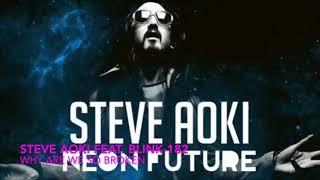 Steve Aoki feat. Blink - 182 - Why Are We So Broken (Steve Aoki Bottles Of Beer On The Wal ...